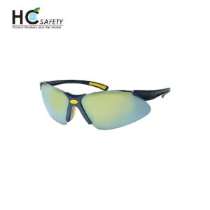 Safety Glasses P620-BB