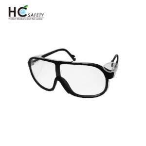 Safety Glasses P431