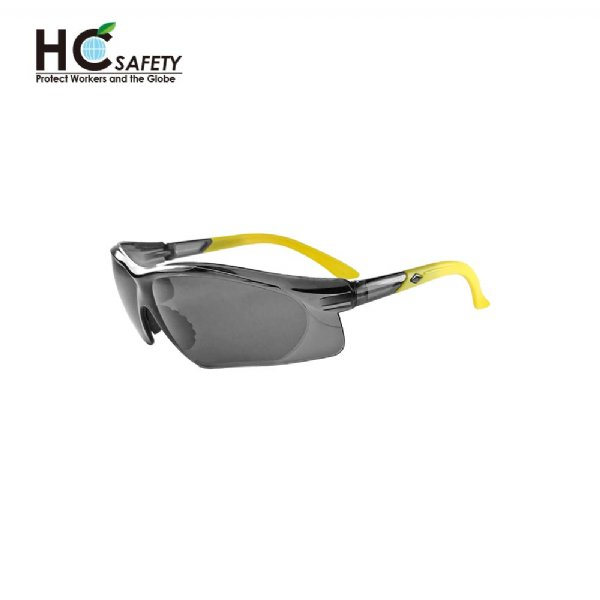 Safety Glasses HC200-A-Y